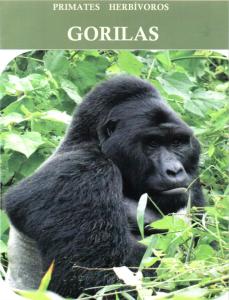 Gorila-Tapa